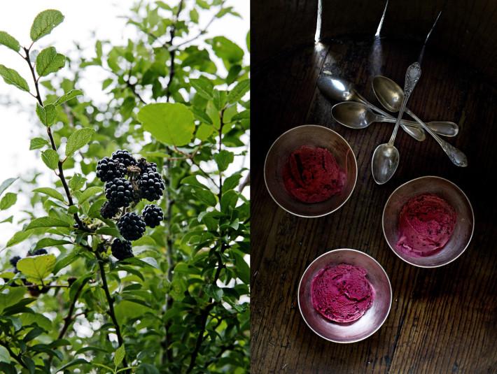 blackberryicecream-710x535