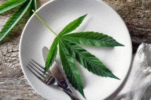 Cannabis Cooks