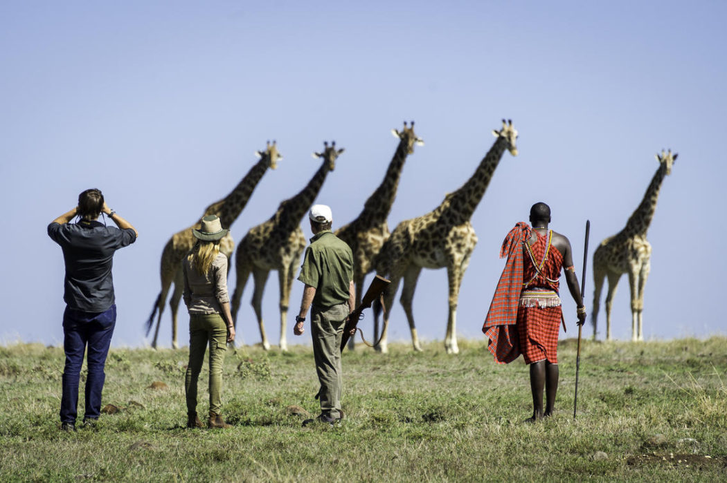 masai mara 2017 02 50