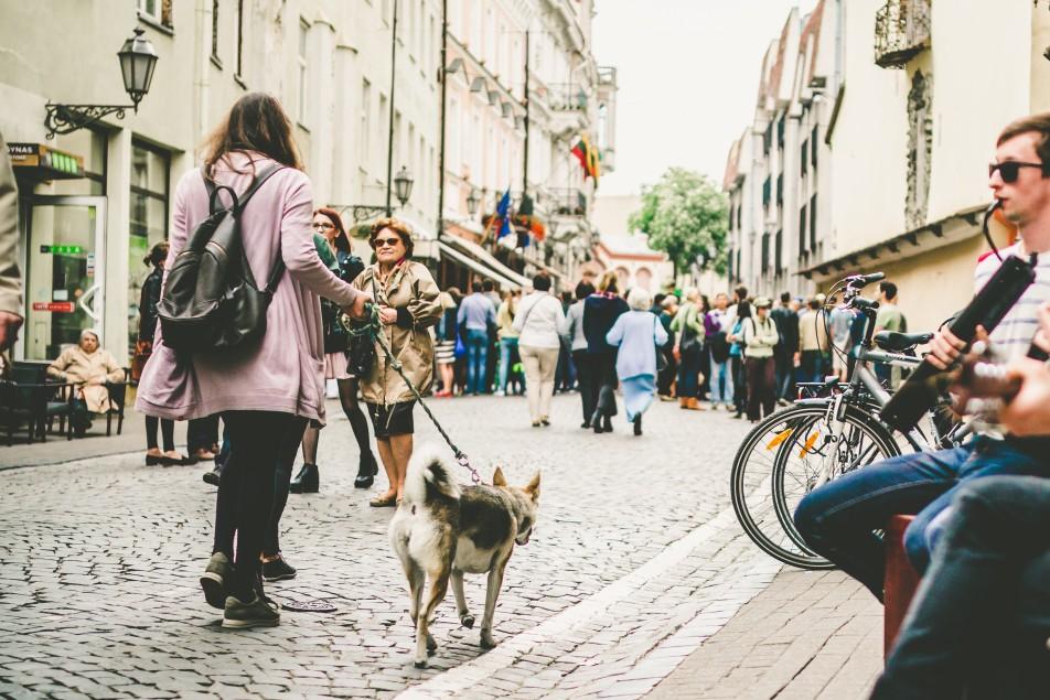 walking dog t20 e8JwZ7
